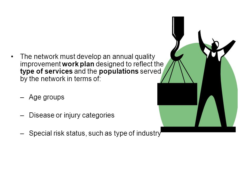The network must develop an annual quality improvement work plan designed to reflect the type of services and the populations served by the network in terms of: –Age groups –Disease or injury categories –Special risk status, such as type of industry
