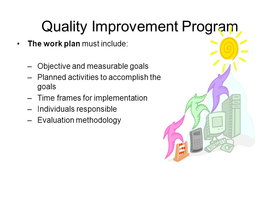Quality Improvement Program The work plan must include: –Objective and measurable goals –Planned activities to accomplish the goals –Time frames for implementation –Individuals responsible –Evaluation methodology
