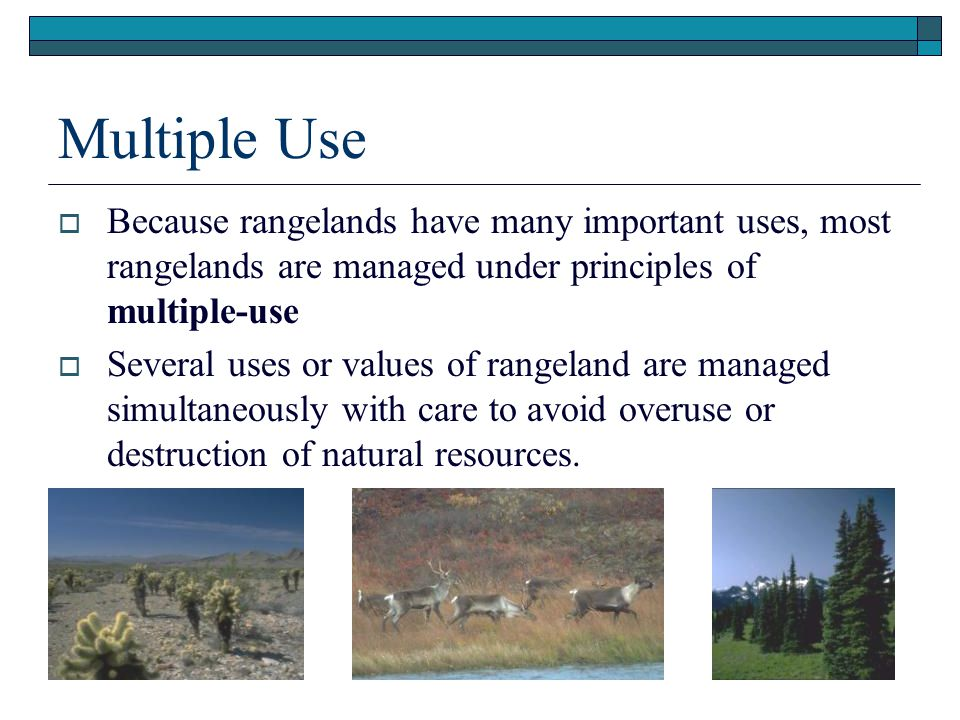 Multiple Use  Because rangelands have many important uses, most rangelands are managed under principles of multiple-use  Several uses or values of rangeland are managed simultaneously with care to avoid overuse or destruction of natural resources.
