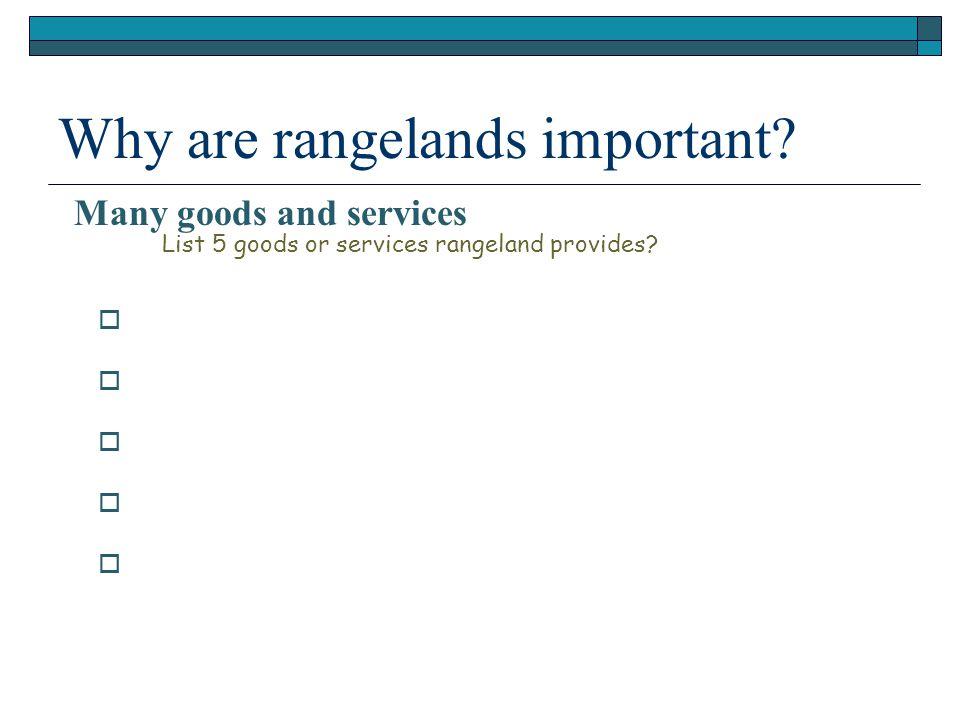           List 5 goods or services rangeland provides.