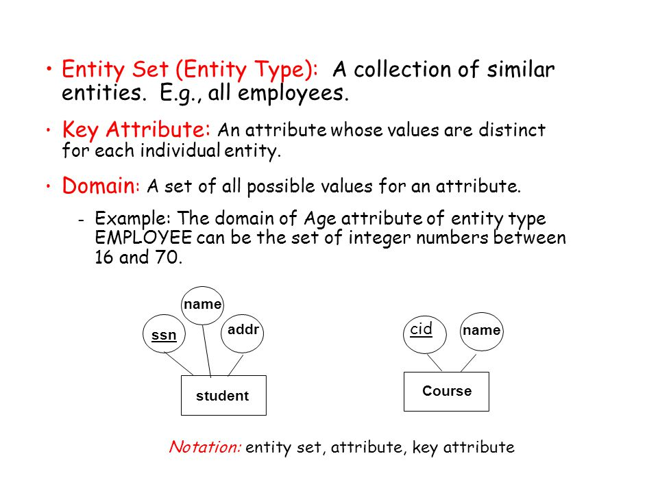 Entity Set (Entity Type): A collection of similar entities.