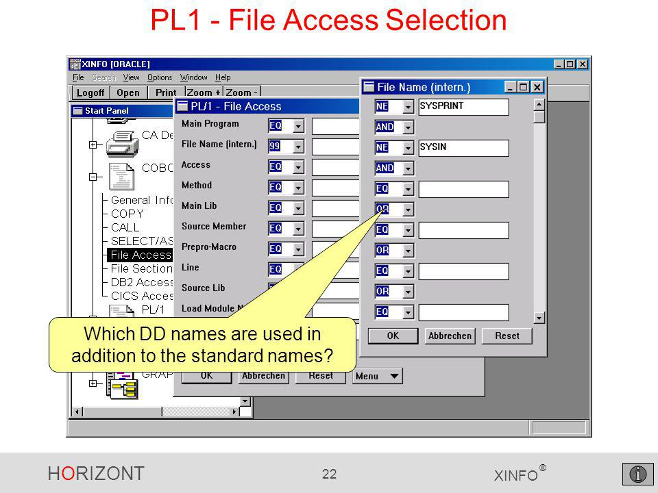 HORIZONT 22 XINFO ® PL1 - File Access Selection Which DD names are used in addition to the standard names