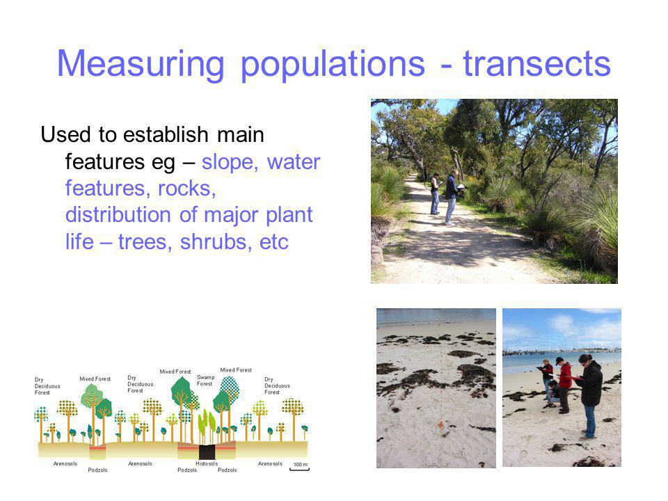 Measuring populations - transects Used to establish main features eg – slope, water features, rocks, distribution of major plant life – trees, shrubs, etc