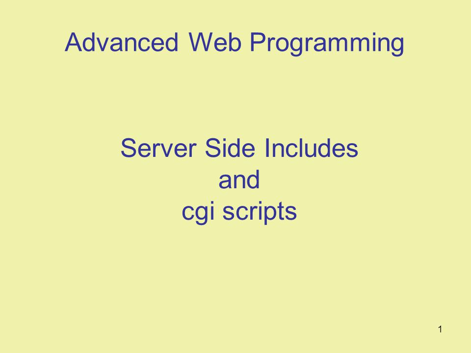1 Server Side Includes and cgi scripts Advanced Web Programming