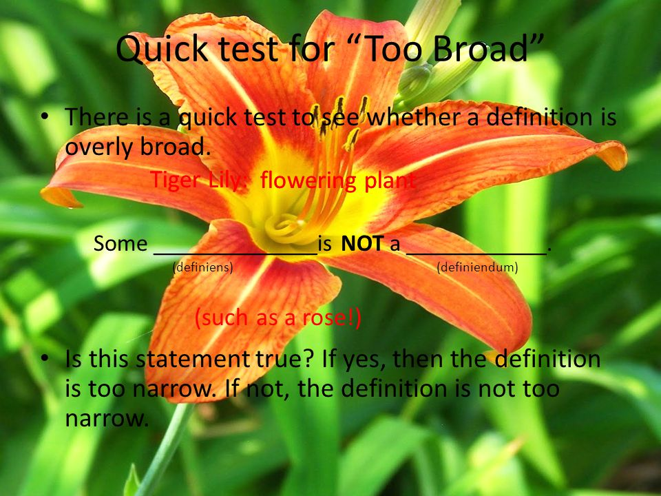 """Quick test for """"Too Broad"""" flowering plant Tiger Lily: flowering plant There is a quick test to see whether a definition is overly broad. Some _______"""