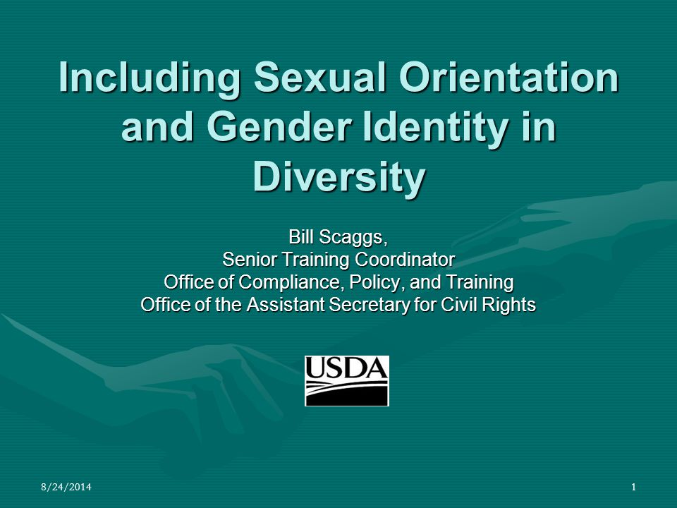 8/24/201452 Current Issues for GLBT Individuals in the United States Same-sex Partnerships 1,138 benefits, rights and protections are provided on the basis of marital status in Federal law.