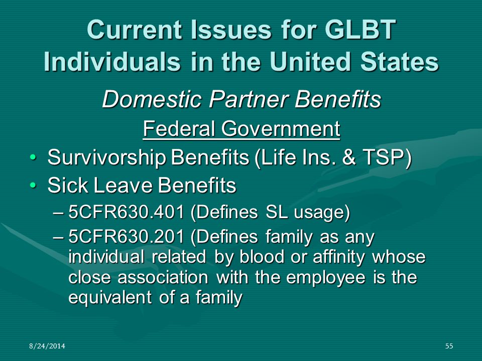 8/24/201455 Current Issues for GLBT Individuals in the United States Domestic Partner Benefits Federal Government Survivorship Benefits (Life Ins. & T