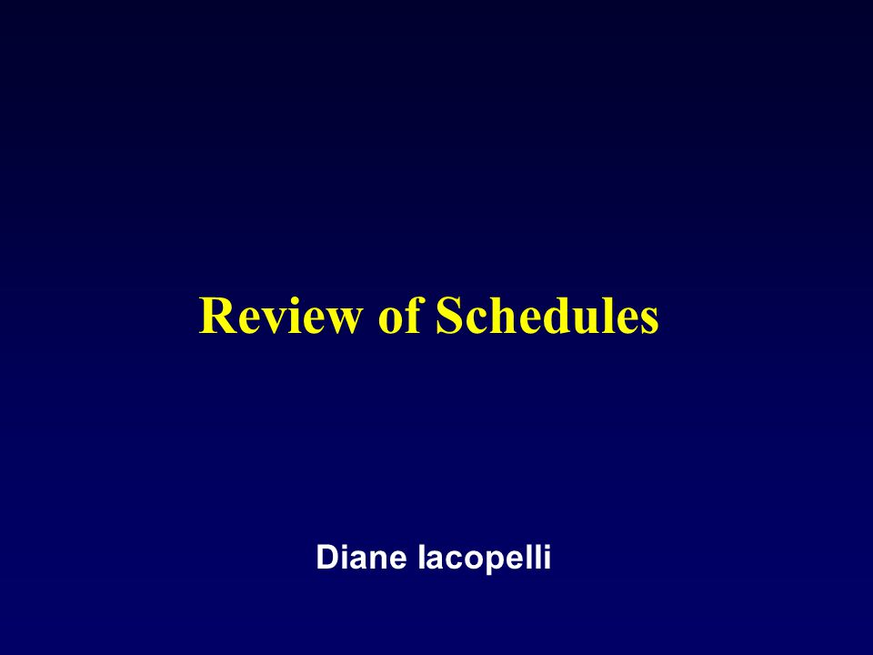 Review of Schedules Diane Iacopelli