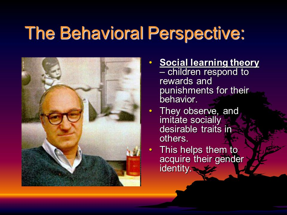 The Behavioral Perspective: Social learning theory – children respond to rewards and punishments for their behavior.Social learning theory – children