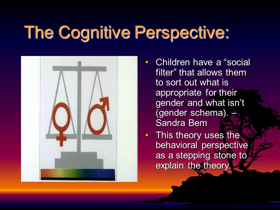 "The Cognitive Perspective: Children have a ""social filter"" that allows them to sort out what is appropriate for their gender and what isn't (gender sc"