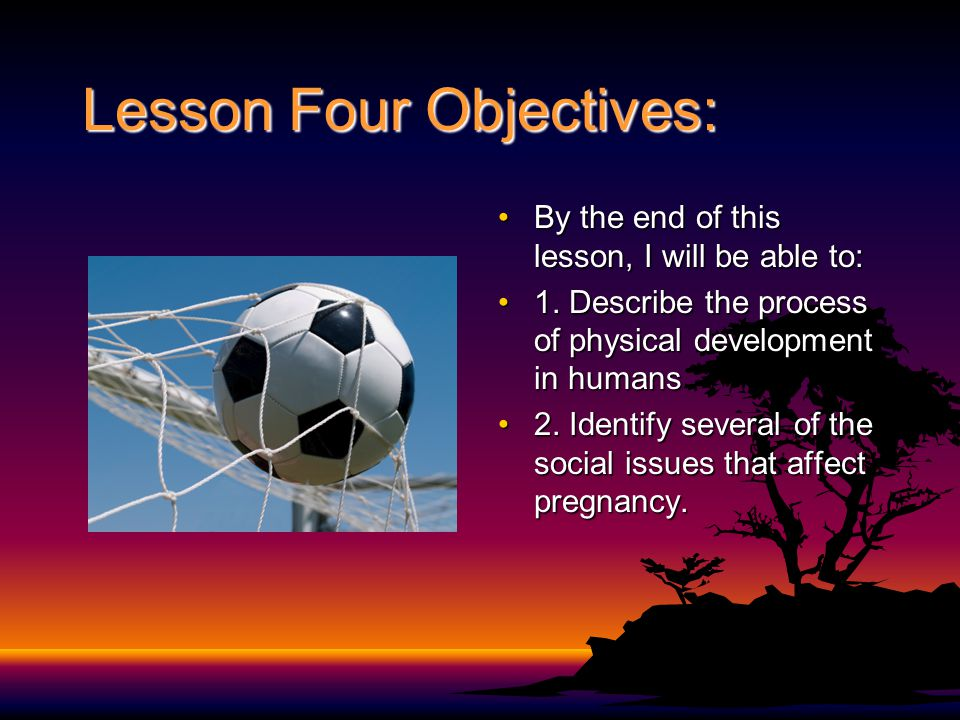 Lesson Four Objectives: By the end of this lesson, I will be able to:By the end of this lesson, I will be able to: 1. Describe the process of physical