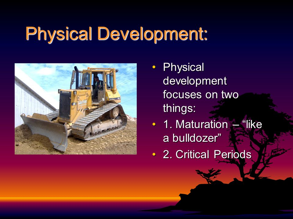 "Physical Development: Physical development focuses on two things:Physical development focuses on two things: 1. Maturation – ""like a bulldozer""1. Matu"