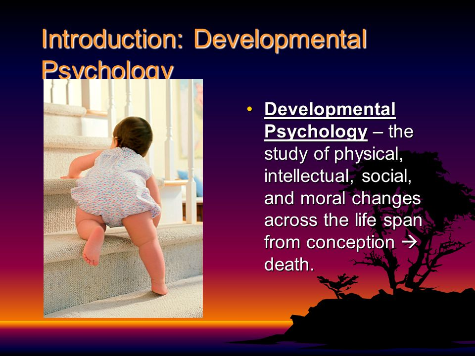 Introduction: Developmental Psychology Developmental Psychology – the study of physical, intellectual, social, and moral changes across the life span