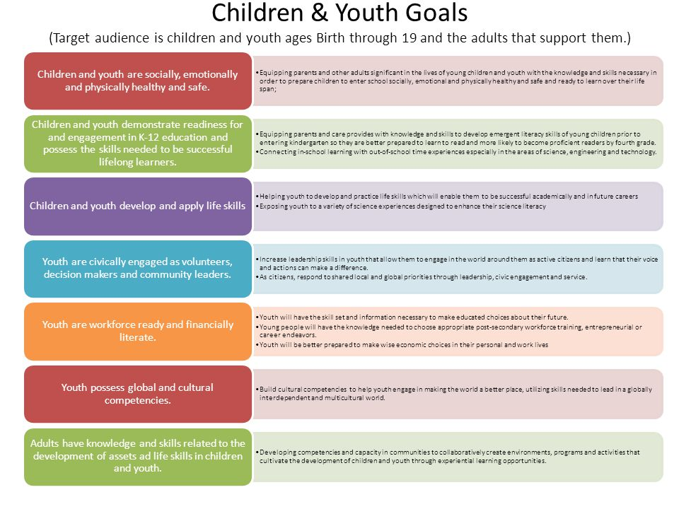 Children & Youth Goals (Target audience is children and youth ages Birth through 19 and the adults that support them.) Equipping parents and other adults significant in the lives of young children and youth with the knowledge and skills necessary in order to prepare children to enter school socially, emotional and physically healthy and safe and ready to learn over their life span; Children and youth are socially, emotionally and physically healthy and safe.