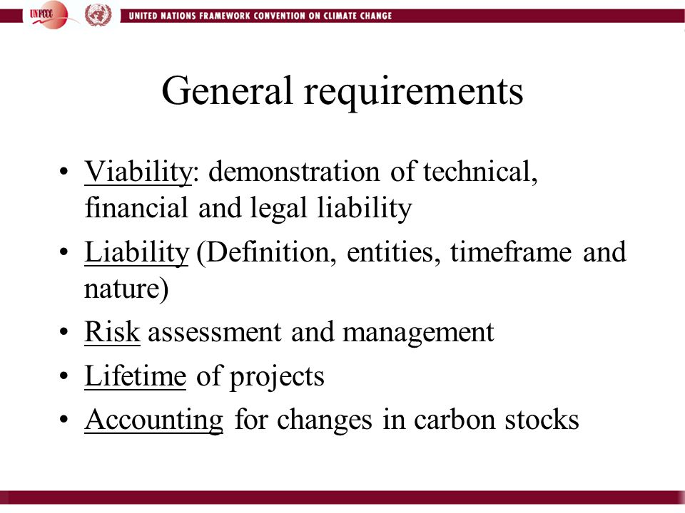 General requirements Viability: demonstration of technical, financial and legal liability Liability (Definition, entities, timeframe and nature) Risk assessment and management Lifetime of projects Accounting for changes in carbon stocks