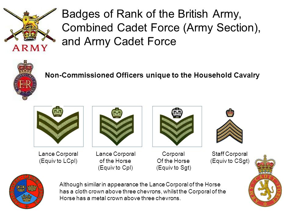 Badges of Rank of the British Army, Combined Cadet Force (Army Section), and Army Cadet Force Lance Corporal (Equiv to LCpl) Lance Corporal of the Hor