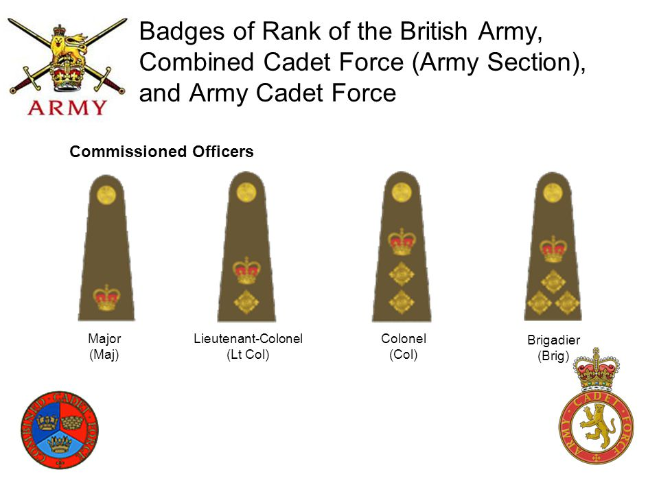 Badges of Rank of the British Army, Combined Cadet Force (Army Section), and Army Cadet Force Major (Maj) Lieutenant-Colonel (Lt Col) Colonel (Col) Br