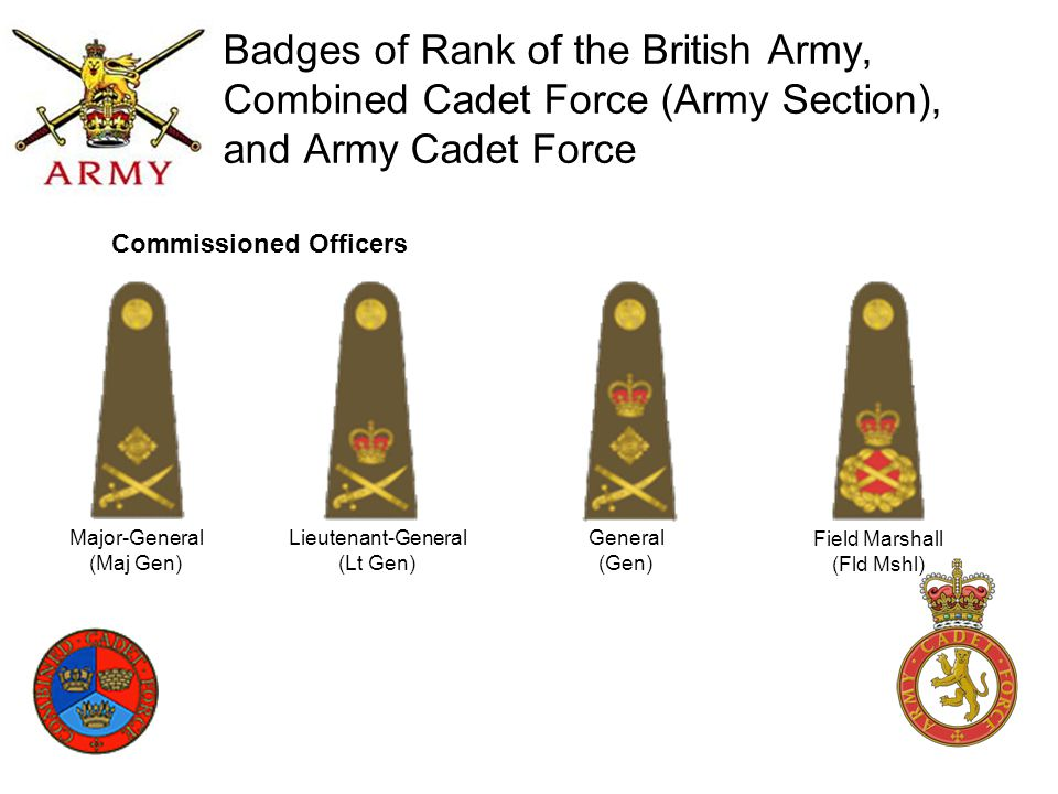 Badges of Rank of the British Army, Combined Cadet Force (Army Section), and Army Cadet Force Major-General (Maj Gen) Lieutenant-General (Lt Gen) Gene