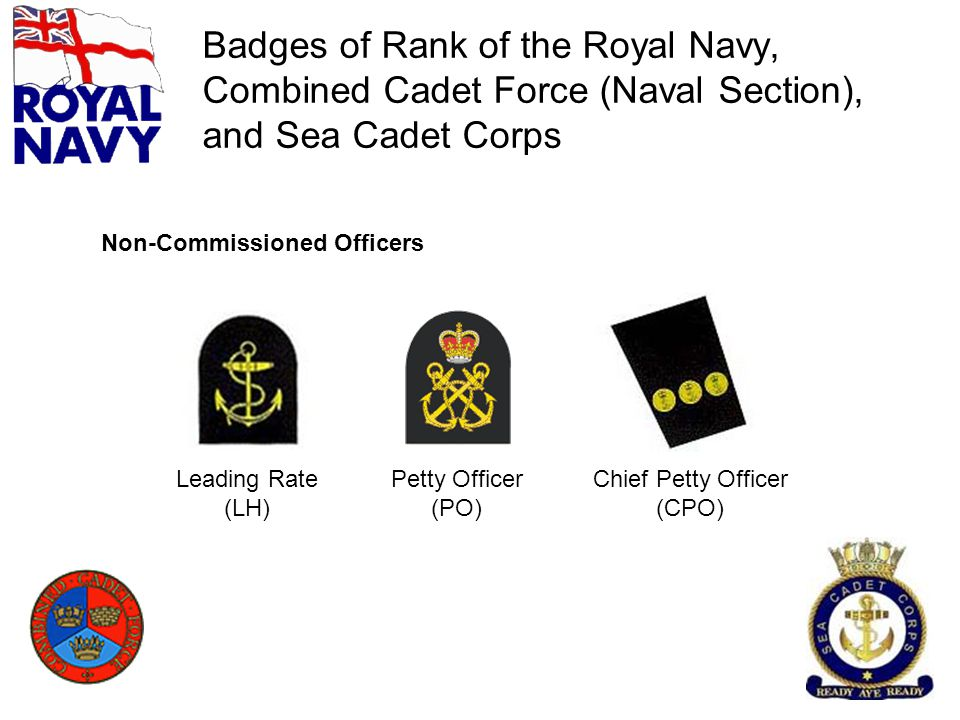 Badges of Rank of the Royal Navy, Combined Cadet Force (Naval Section), and Sea Cadet Corps Leading Rate (LH) Petty Officer (PO) Chief Petty Officer (