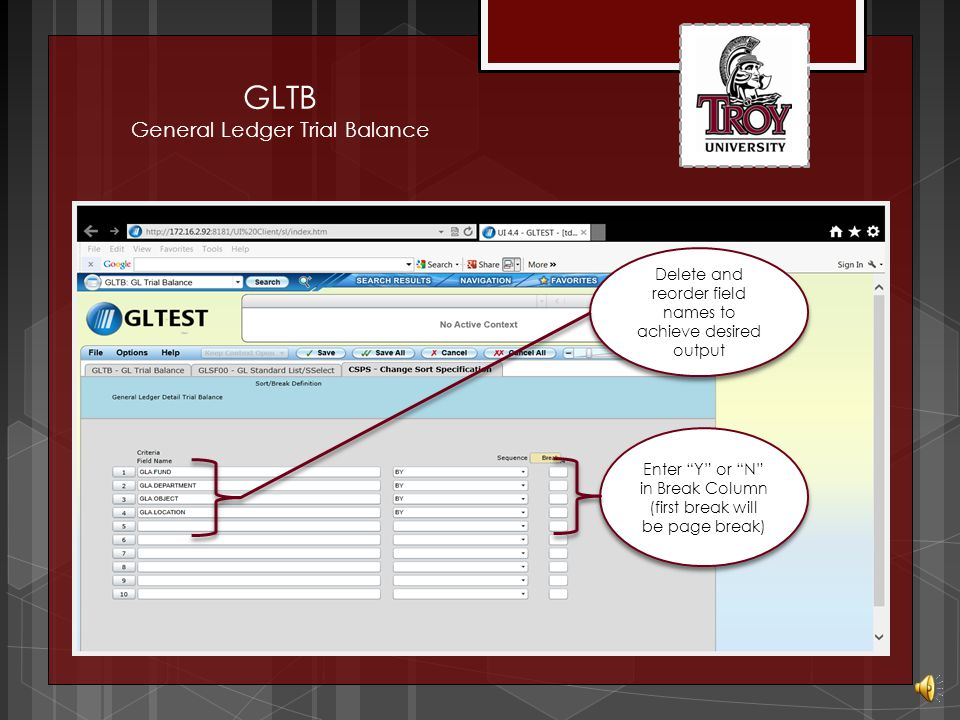 GLTB General Ledger Trial Balance Detail to enter report sort specifications