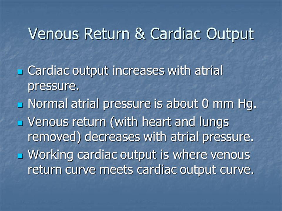 Venous Return & Cardiac Output Cardiac output increases with atrial pressure. Cardiac output increases with atrial pressure. Normal atrial pressure is