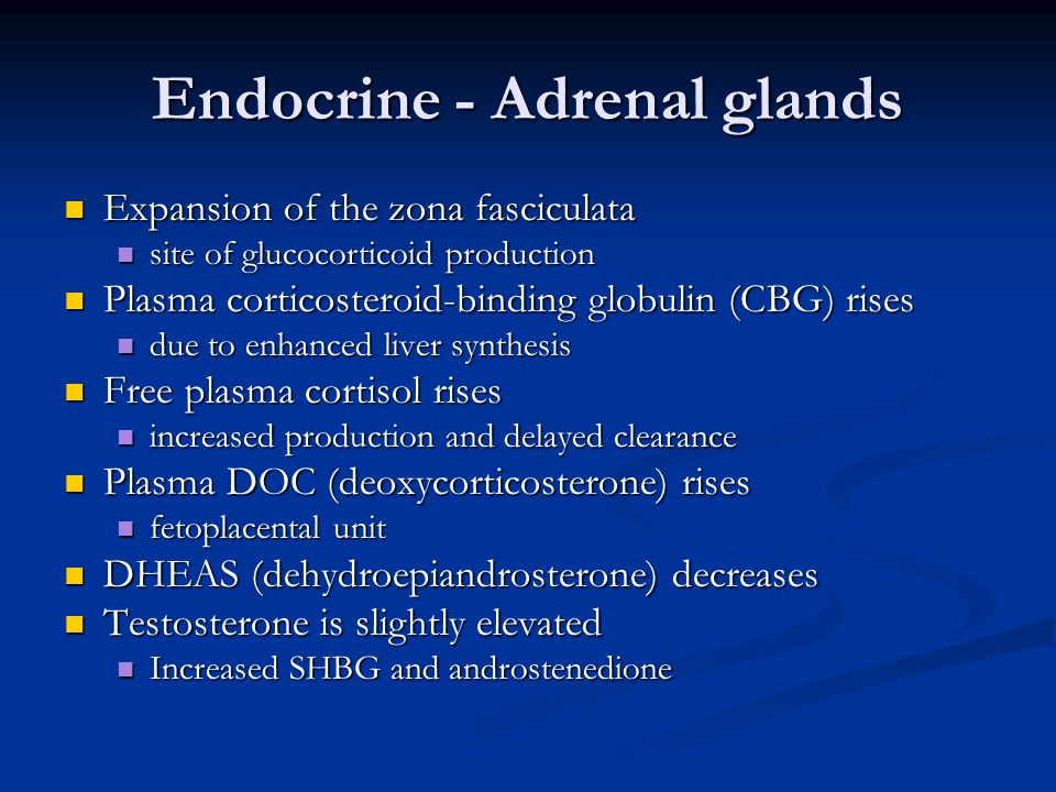 Endocrine - Adrenal glands Expansion of the zona fasciculata Expansion of the zona fasciculata site of glucocorticoid production site of glucocorticoi