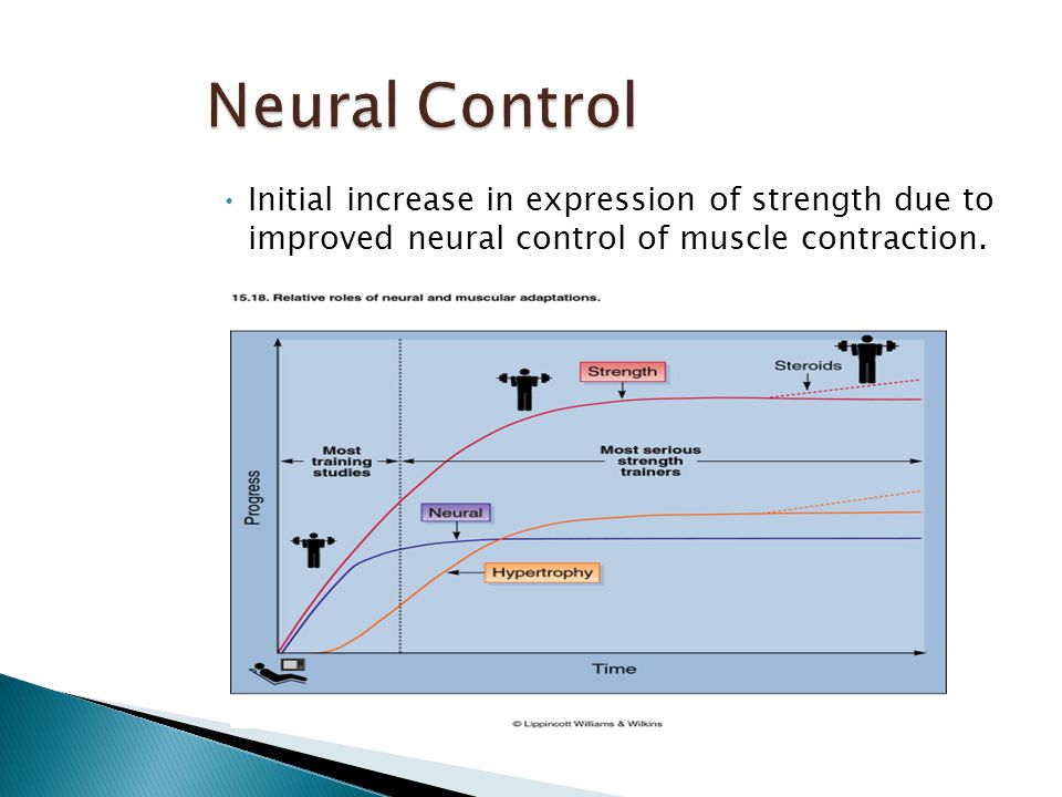 Initial increase in expression of strength due to improved neural control of muscle contraction.