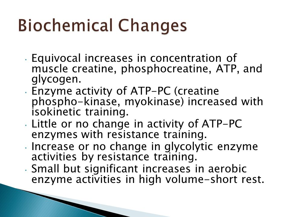 Equivocal increases in concentration of muscle creatine, phosphocreatine, ATP, and glycogen.