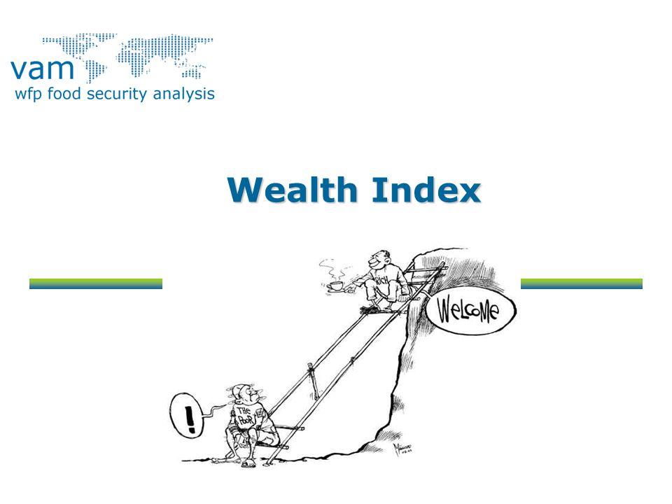 Wealth Index
