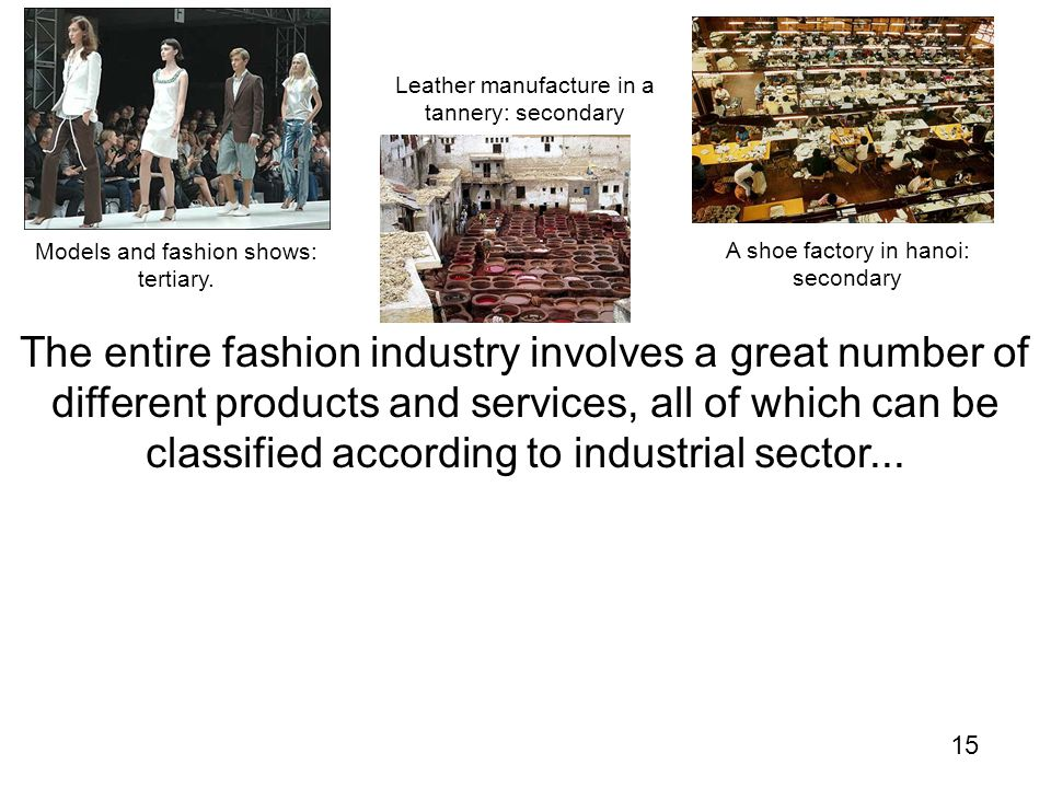 15 The entire fashion industry involves a great number of different products and services, all of which can be classified according to industrial sector...