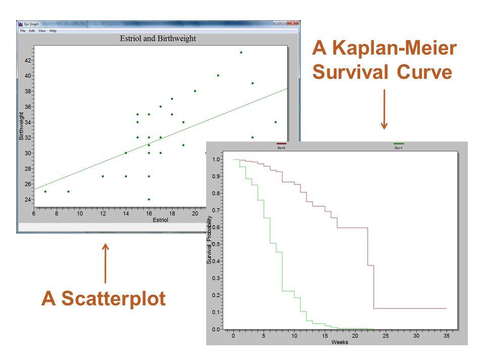 A Kaplan-Meier Survival Curve A Scatterplot