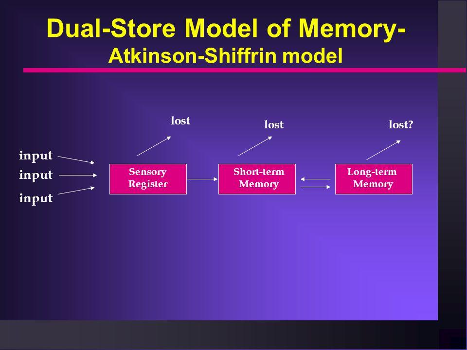 Dual-Store Model of Memory- Atkinson-Shiffrin model input lost lost? Sensory Register Short-term Memory Long-term Memory