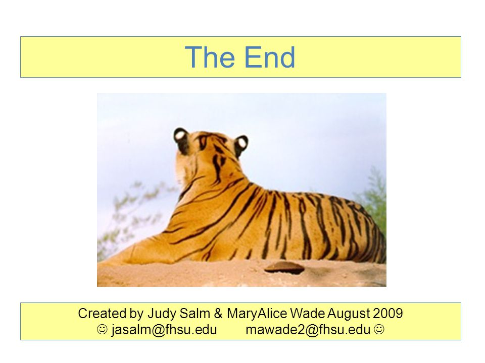 The End Created by Judy Salm & MaryAlice Wade August 2009 jasalm@fhsu.edu mawade2@fhsu.edu
