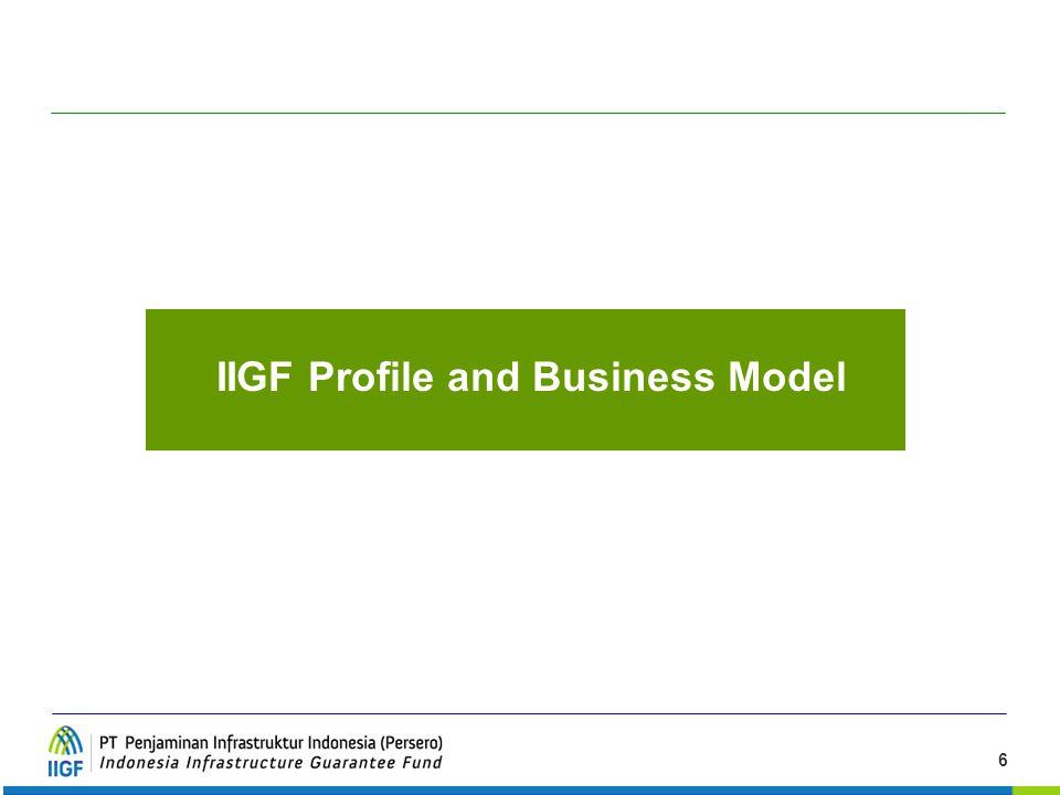 6 IIGF Profile and Business Model