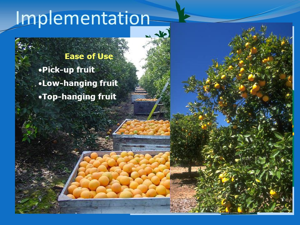 Ease of Use Pick-up fruit Low-hanging fruit Top-hanging fruit Implementation
