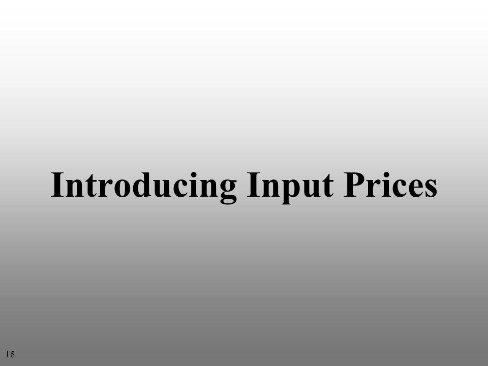 Introducing Input Prices 18