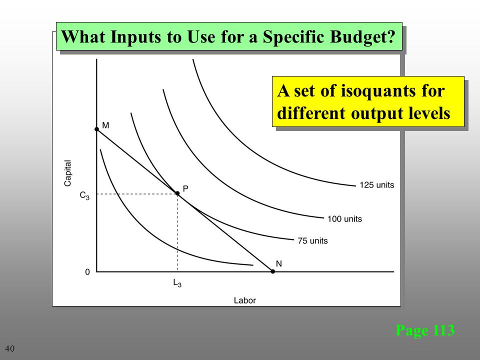 Page 113 What Inputs to Use for a Specific Budget? A set of isoquants for different output levels 40