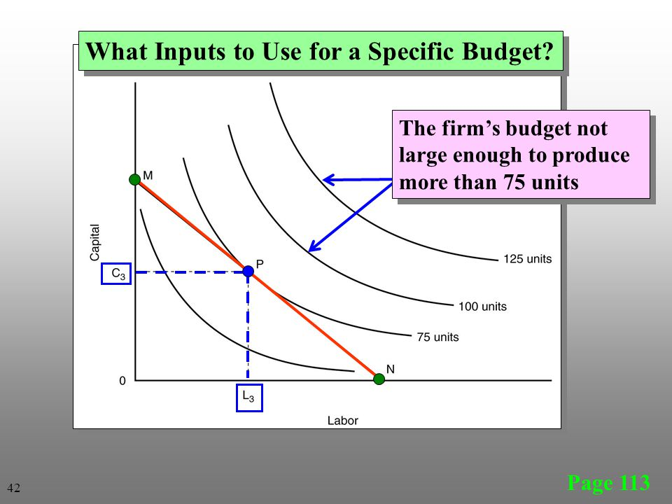 Page 113 What Inputs to Use for a Specific Budget? The firm's budget not large enough to produce more than 75 units 42
