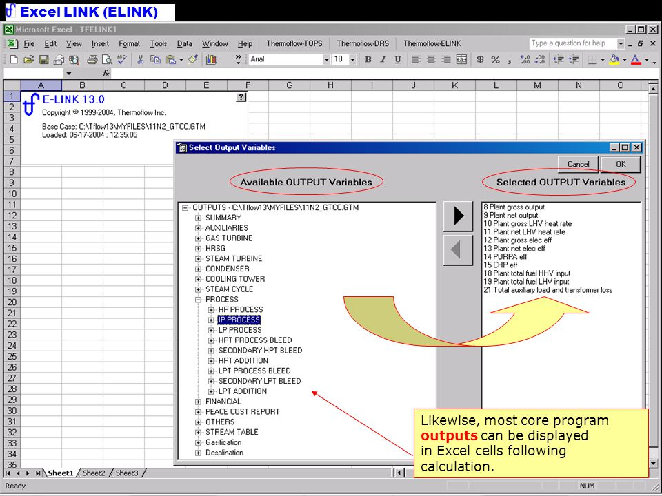Excel LINK (ELINK) Main Worksheet Cases are organized in columns.