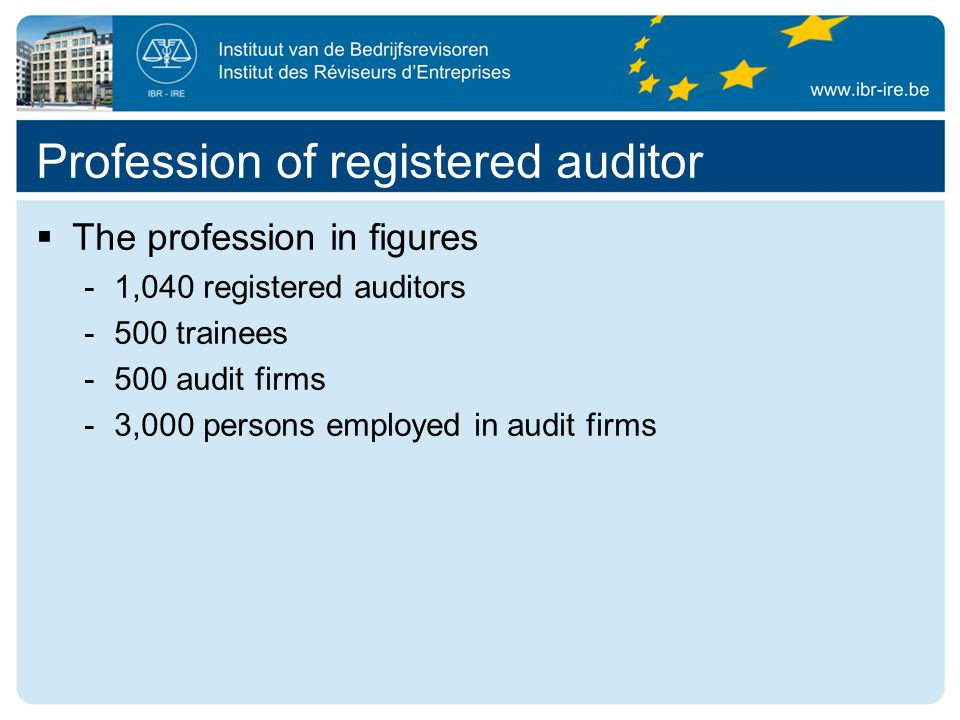  The profession in figures -1,040 registered auditors -500 trainees -500 audit firms -3,000 persons employed in audit firms Profession of registered auditor