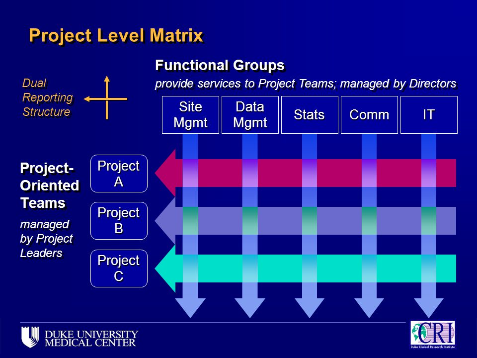 Project A Project B Project C Project Level Matrix Site Mgmt Data Mgmt CommStatsIT Project- Oriented Teams managed by Project Leaders Project- Oriented Teams managed by Project Leaders Functional Groups provide services to Project Teams; managed by Directors Functional Groups provide services to Project Teams; managed by Directors Dual Reporting Structure
