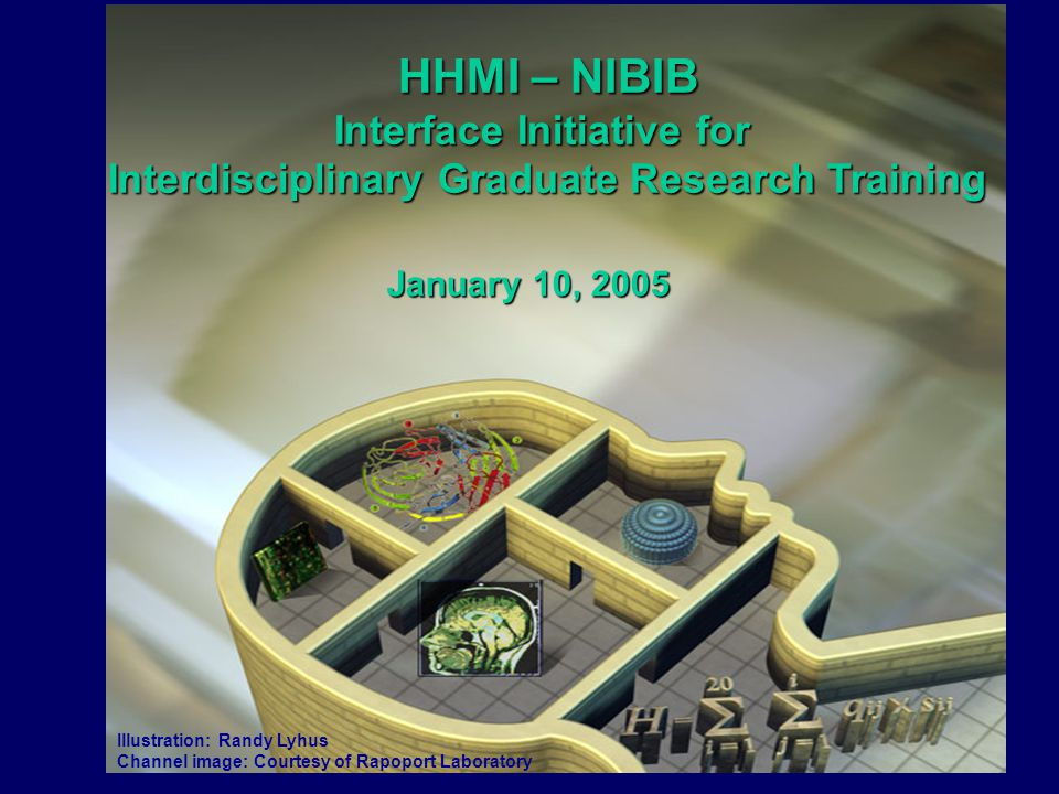 Illustration: Randy Lyhus Channel image: Courtesy of Rapoport Laboratory HHMI – NIBIB HHMI – NIBIB Interface Initiative for Interdisciplinary Graduate Research Training January 10, 2005