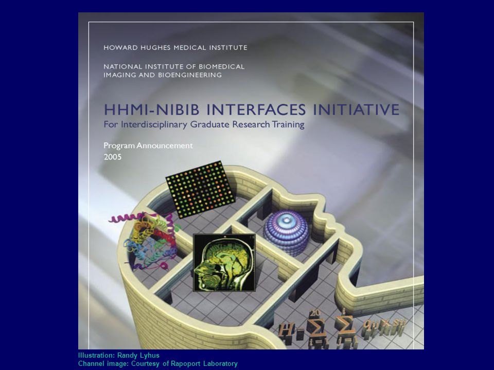 NIH Roadmap for Medical Research ACCELERATING MEDICAL DISCOVERY TO IMPROVE HEALTH www.nihroadmap.nih.gov