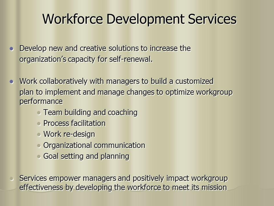 Workforce Development Services Develop new and creative solutions to increase the Develop new and creative solutions to increase the organization's capacity for self-renewal.