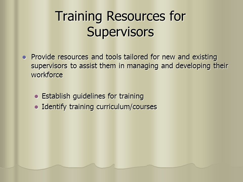 Training Resources for Supervisors Provide resources and tools tailored for new and existing supervisors to assist them in managing and developing their workforce Provide resources and tools tailored for new and existing supervisors to assist them in managing and developing their workforce Establish guidelines for training Establish guidelines for training Identify training curriculum/courses Identify training curriculum/courses