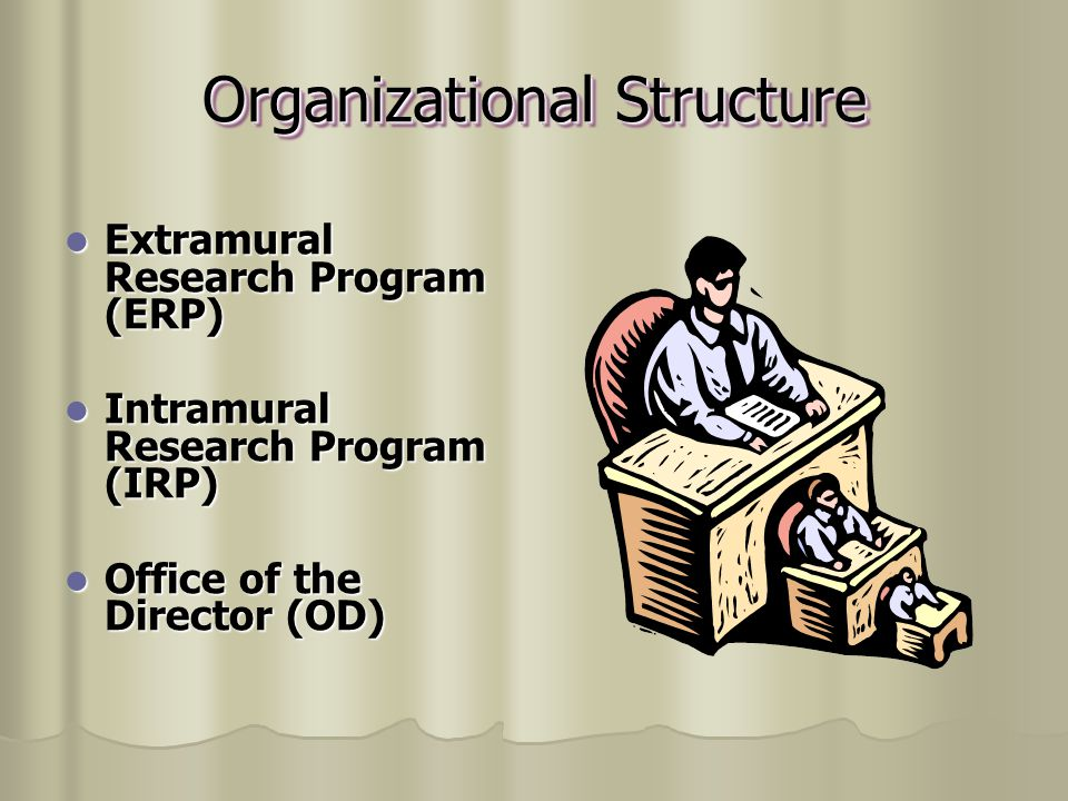 Organizational Structure Extramural Research Program (ERP) Intramural Research Program (IRP) Office of the Director (OD)