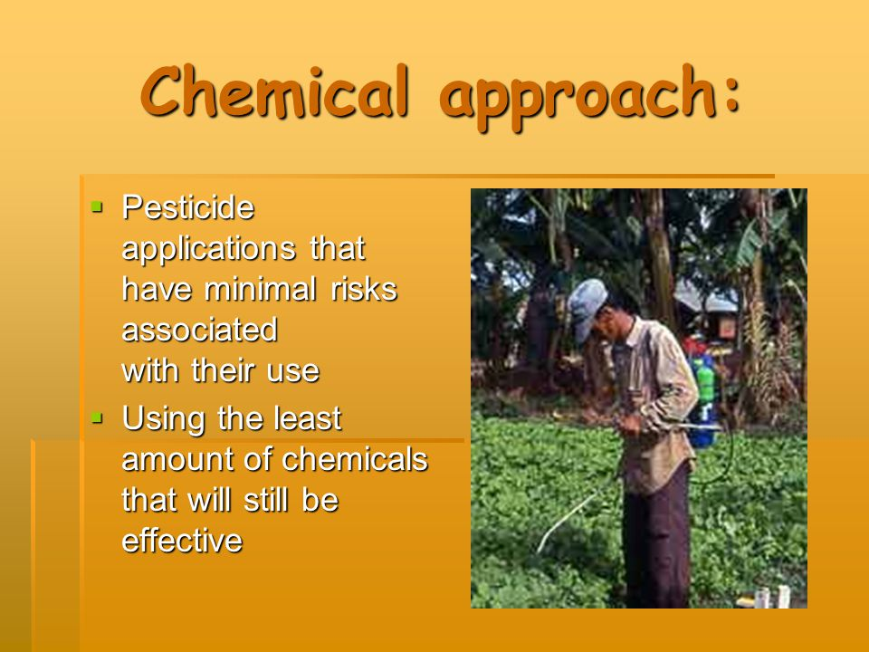 Chemical approach:  Pesticide applications that have minimal risks associated with their use  Using the least amount of chemicals that will still be effective