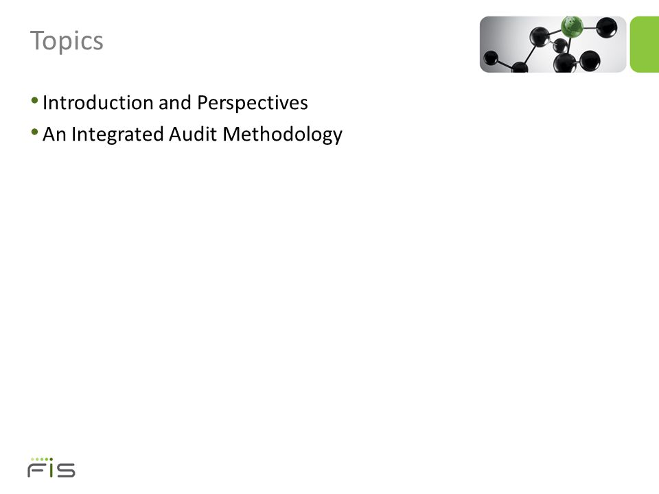 INTRODUCTION AND PERSPECTIVES Developing a Successful Integrated Audit Approach