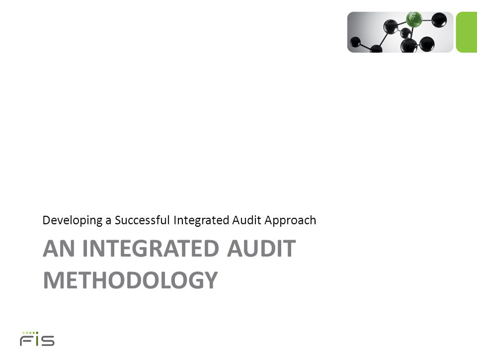 AN INTEGRATED AUDIT METHODOLOGY Developing a Successful Integrated Audit Approach