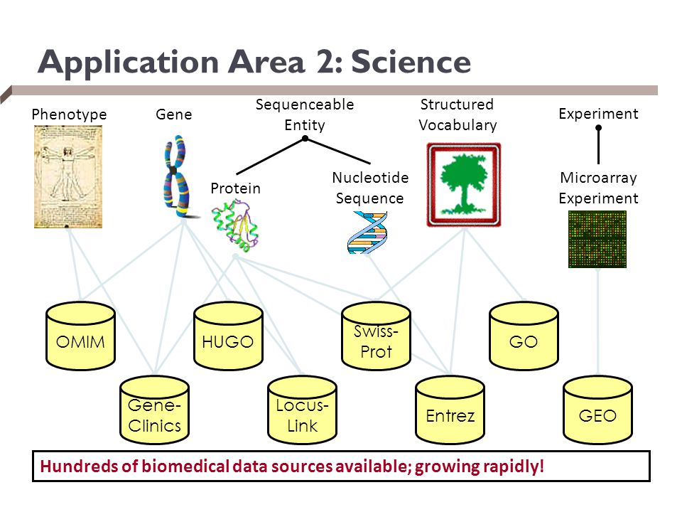 OMIM Swiss- Prot HUGOGO Gene- Clinics Entrez Locus- Link GEO Sequenceable Entity GenePhenotype Structured Vocabulary Experiment Protein Nucleotide Sequence Microarray Experiment Hundreds of biomedical data sources available; growing rapidly.